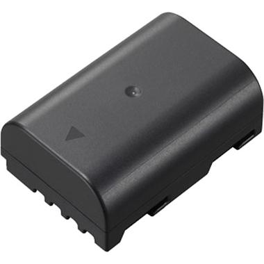 Extra Panasonic DMW-BLF19 Battery